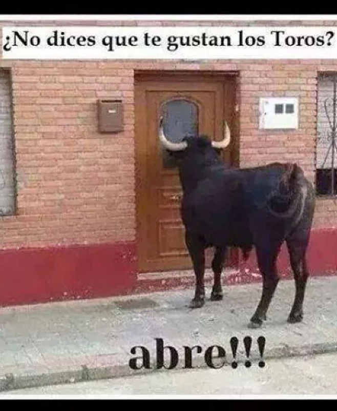 Si te gustan los toros, ¡Abre!