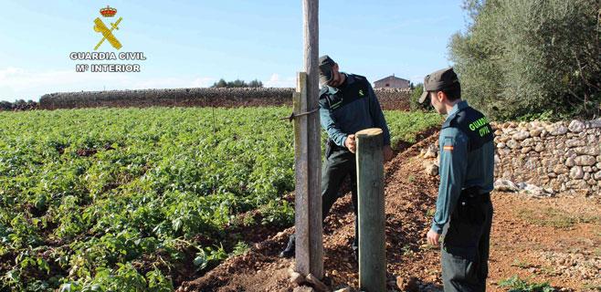 Detenido por robar cobre de fincas agrícolas del Plà, Llevant y Palma