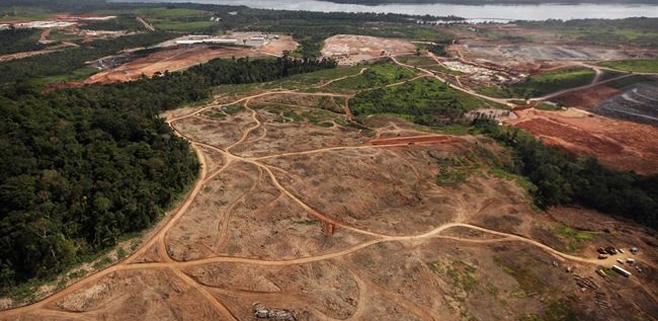 La deforestación del Amazonas de Brasil crece un 467%
