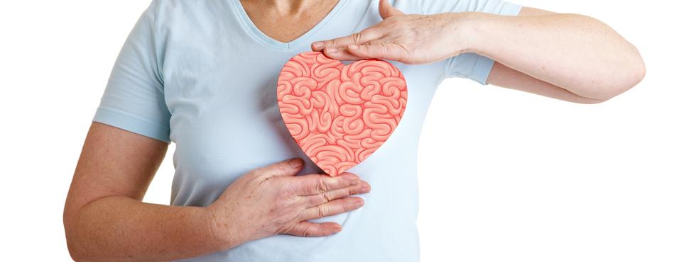 Receta del día: El cerebro del corazón
