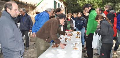 Bunyola celebra su I Jornada Micològica