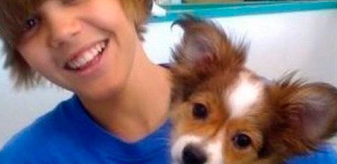 Ha muerto Sammy, el perro de Justin Bieber