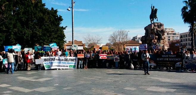 Concentración en Plaça d'Espanya para exigir el cierre de Marineland Mallorca