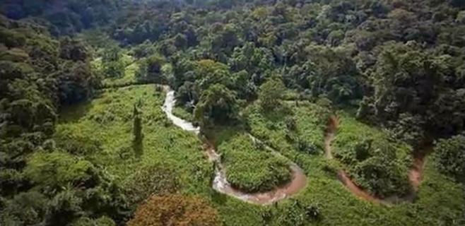 Descubierta una ciudad perdida en la selva