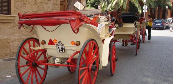69.000 firmas piden que se eliminen las calesas tiradas por caballos en Palma
