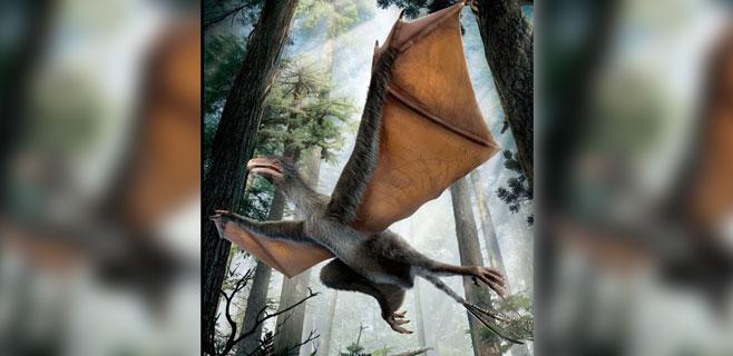 Hallado un extraño dinosaurio con alas de murciélago