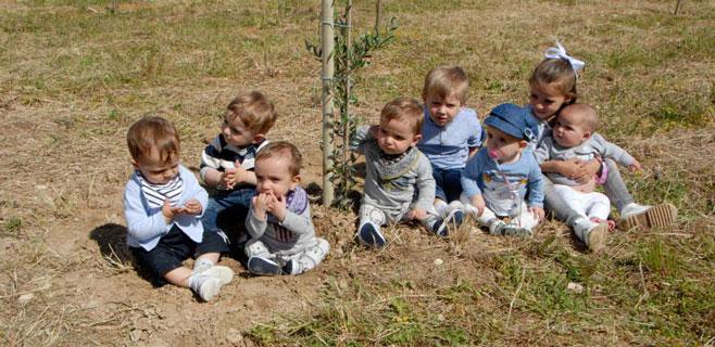 Los nacidos en 2014 tendrán un árbol con su nombre