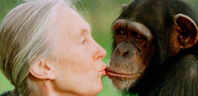 Jane Goodall repudia la