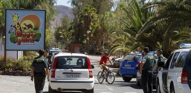 Gran Simio denuncia la muerte de 2 chimpacés en Fuerteventura