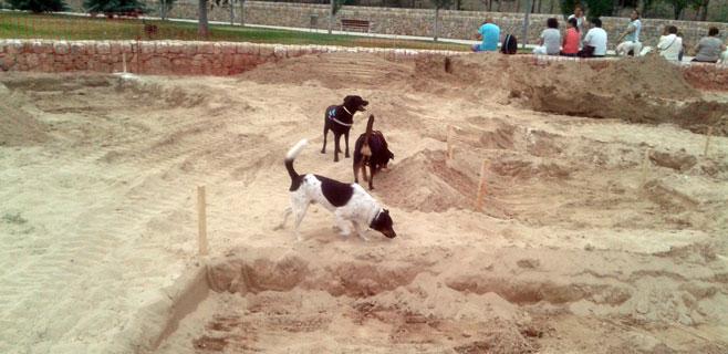 Baldea denuncia que Cort convierte una zona para perros en parque infantil