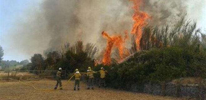 Los incendios del fin de semana en Eivissa queman 35 hectáreas