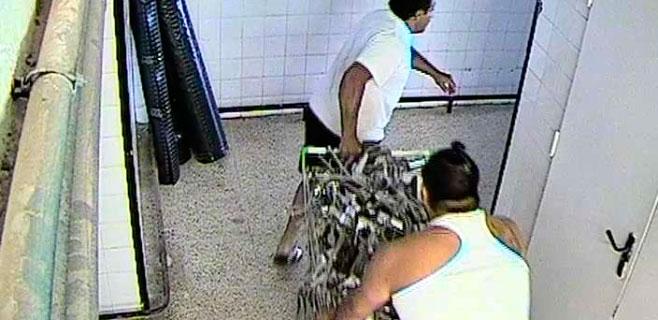 3 detenidos por robar gran cantidad de grifos de un hotel de Cales de Mallorca
