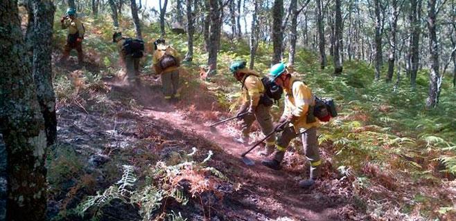 Infoex da por controlado el incendio de Sierra de Gata