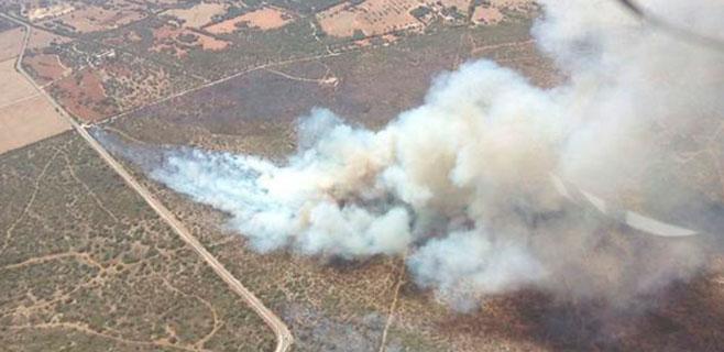 El segundo incendio en la misma finca de Petra en 8 días quema 25 hectáreas