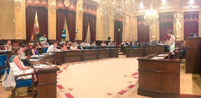 El Parlament suspende las licencias a las grandes superficies durante 6 meses