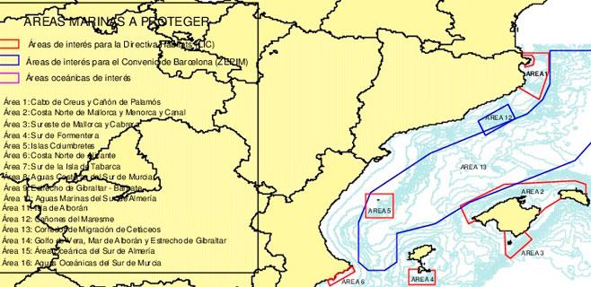 Solicitada la protección de la ruta mediterránea de cetáceos