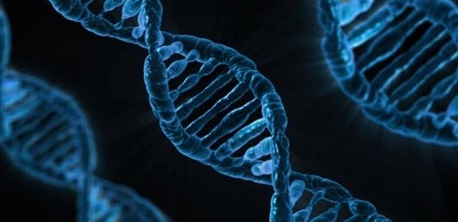 Identificados 4 nuevos trastornos genéticos