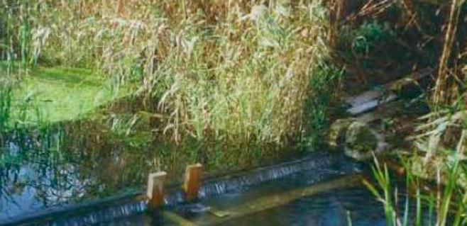 Asaja se opone a un trasvase desde el acuífero de Sa Pobla al de Crestatx