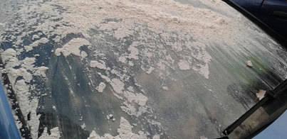 Unos desconocidos atacan el coche de la portavoz del PI en Manacor