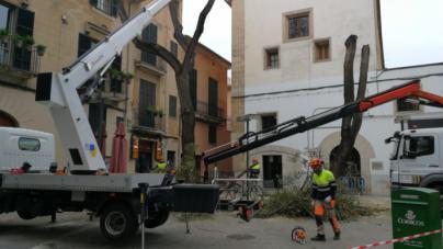El viento no da tregua y pone en alerta a Baleares