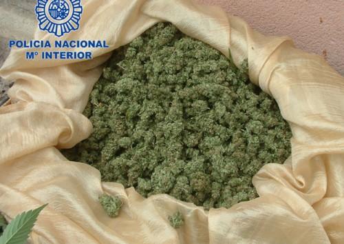 Desmanteladas 4 plantaciones de marihuana en palma - Plantaciones de marihuana interior ...